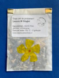 Lemon & Ginger - Proefzakje