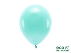 Eco ballonnen donker mint (6 st)