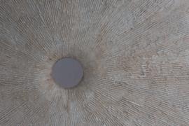 Organisch Sculptuur op Sokkel