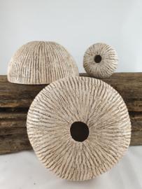 Deco Fossiel middelgroot