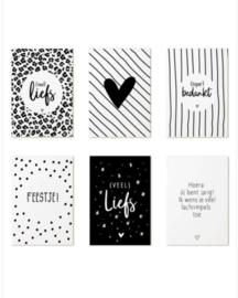 Mini kaartjes - set van 6 - basic