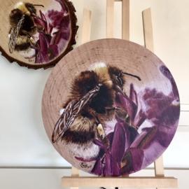 Reproductie van Berken houtschijf houtbrandkunst «Bij nummer 1»