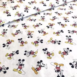 Disney Mickey Original Colour