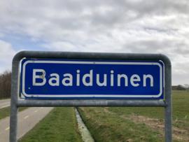 Baaiduinen