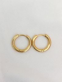 Oorbellen kleine ringen basic goud