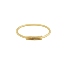 Ring - Wired goud 17