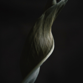 'Twisted' - Atelier K.