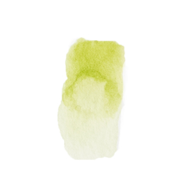Lime green Kaia natural vegan watercolor
