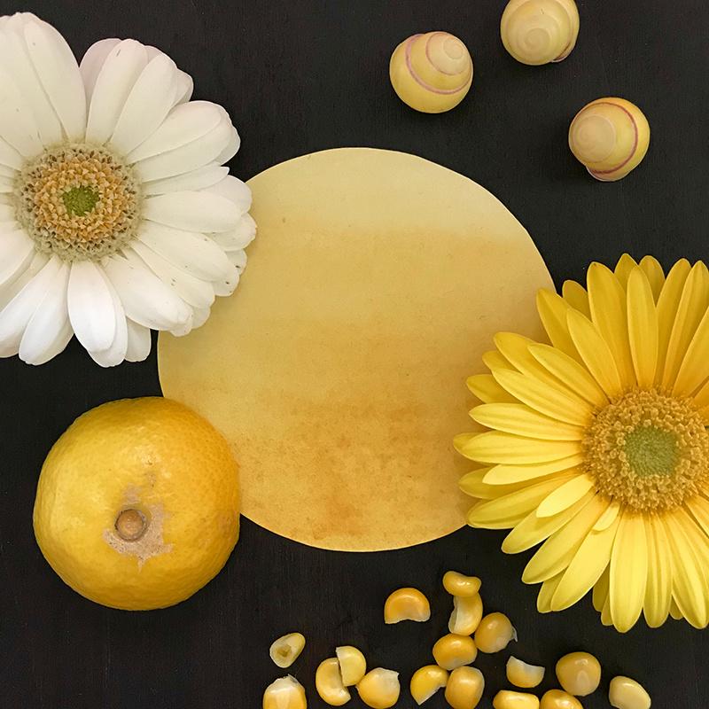 Warm yellow Kaia natural vegan watercolor