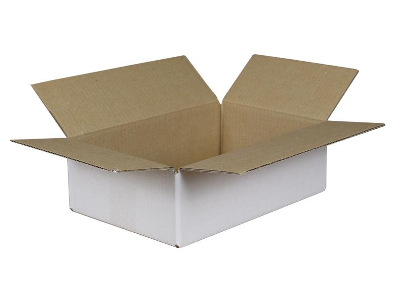 Verzenddoos PLAT MEDIUM 30x20x10 cm 25 stuks