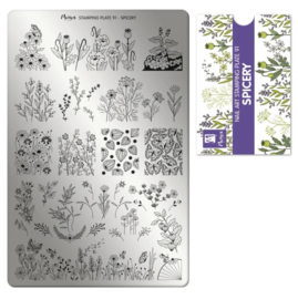 Moyra Stamping Plaat 91 Spicery