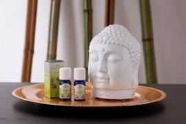 Aroma 'Buddha' diffuser | LakShmi