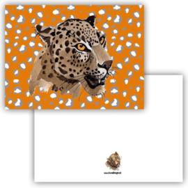 Kaart Leopard orange ( PER 5 STUKS )