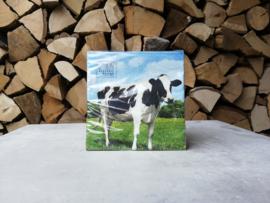 Servet met koe