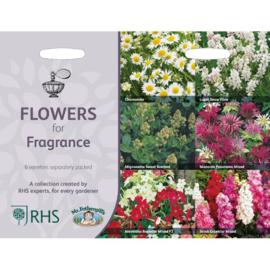 RHS Collectie geurende bloemen