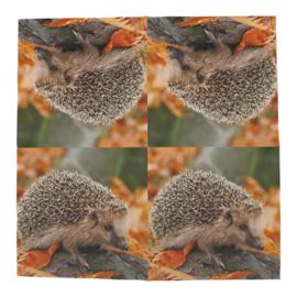 Sevet met egel