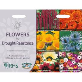 RHS collectie droogte bestendige bloemen