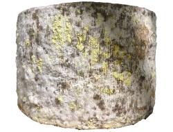 Oudwijker kaas lazulli | stuk circa 1,5 kilo