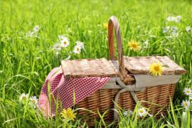 Picknick Box