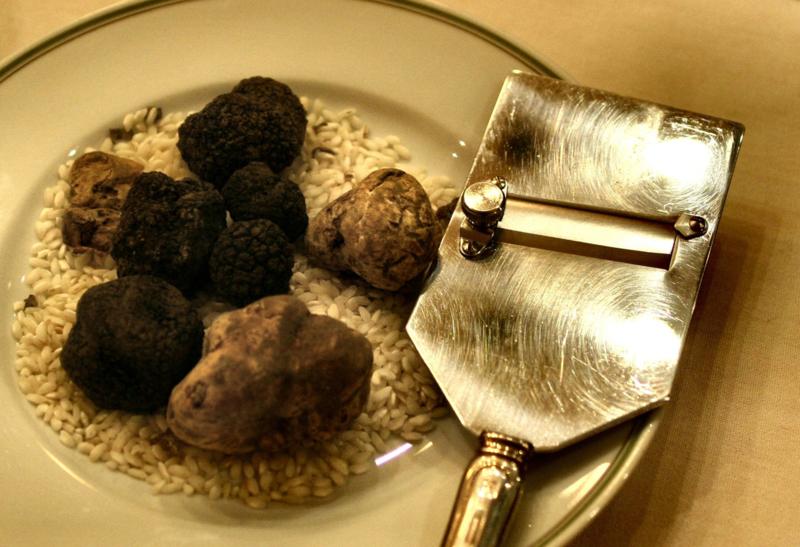 Verse Witte Truffel | stuk 100 gram