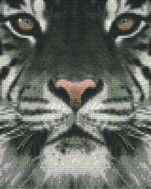 Pixelhobby set - witte tijgerkop - 4 basisplaten