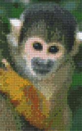 Pixelhobby set - doodskopaapje - 2 basisplaten