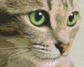 Pixelhobby set - kat met groene ogen - 4 basisplaten