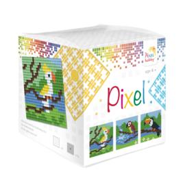 Pixelhobby kubus - tropische vogels