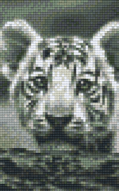 Pixelhobby set - witte tijger welp - 2 basisplaten