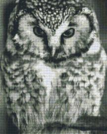Pixelhobby set - owl - 9 basisplaten