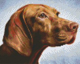 Pixelhobby set - hond - 4 basisplaten