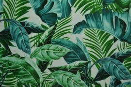 Lycra - green nature
