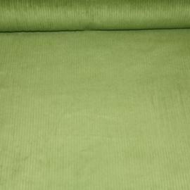 Dikke ribfluweel - groen