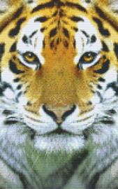 Pixelhobby set - tijger - 8 basisplaten