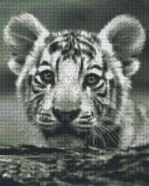 Pixelhobby set - baby tijger - 9 basisplaten