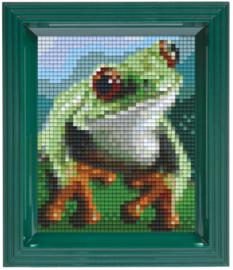 Pixelhobby geschenkverpakking - kikker