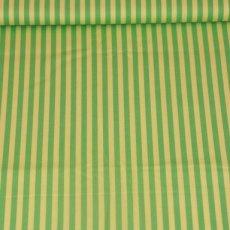 Katoen - Basics clown stripe mint