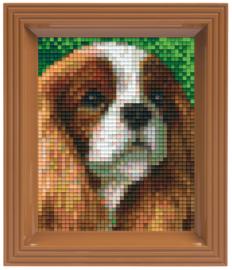 Pixelhobby geschenkverpakking - Cavalier
