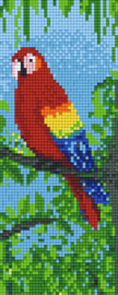 Pixelhobby set - papegaai - 2 basisplaten