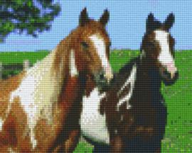 Pixelhobby set - twee paarden - 4 basisplaten