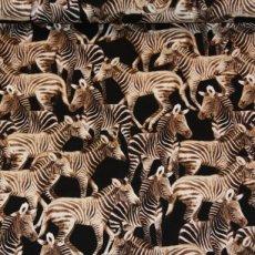 Katoen - Zebras black