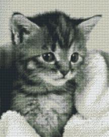 Pixelhobby set - kitten blanket - 9 basisplaten
