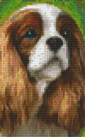 Pixelhobby set - Cavalier - 2 basisplaten
