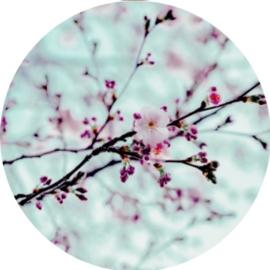 Postpapier set - Spring