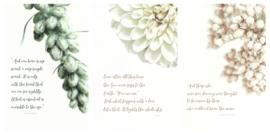 Kaartenset A5 - Poëzie
