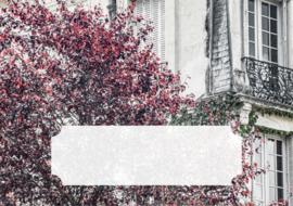 Postpapier set - Paris