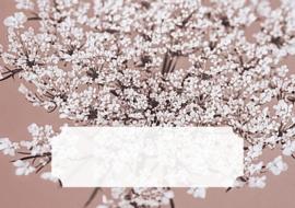 Postpapier set - vlierbloesem oud roze