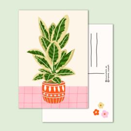 kaart grote plant