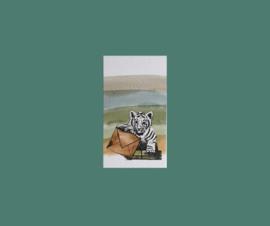 minikaart tijgertje