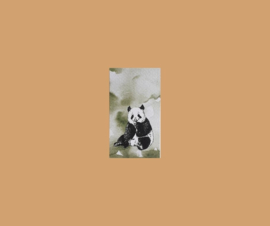 minikaart panda
